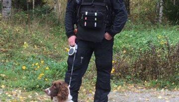 Paddy bombhund